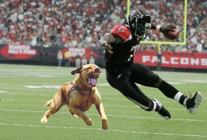 mike vick 300x204 Weekly top 10