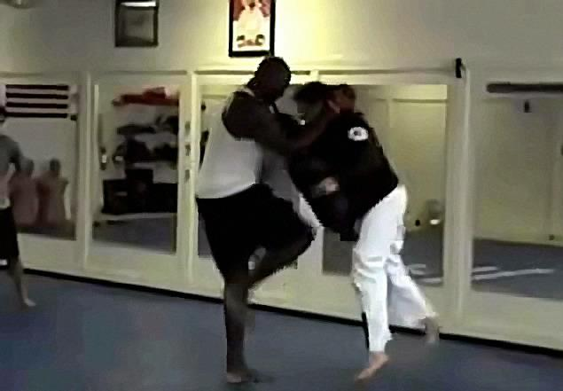 shaq MMA training photo First Jose Canseco now Shaq wants to fight MMA?